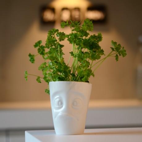 White 'Baffled' porcelain mug with Parsley