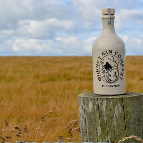 Rhubarb Old Tom Gin and Botanicals 50cl