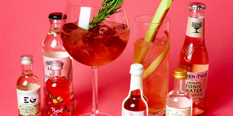 Top 10 Best Gin Gifts To Get Your Friends Or Family